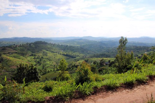 The view on the road from Kibanza to Gacurabwenge.